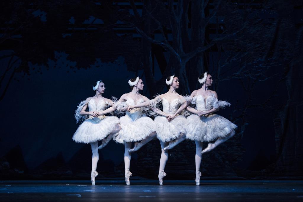 Ballett Weihnachten 2019.Staatsoper Hamburg Stück Ballett Von John Neumeier Illusionen
